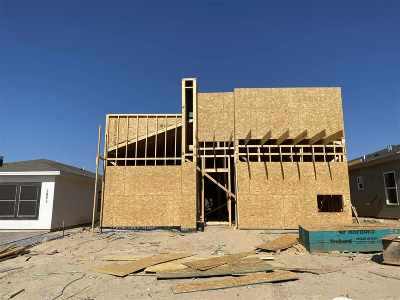 Laredo Single Family Home For Sale: 3805 Gia St.