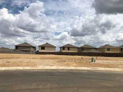 Laredo Single Family Home For Sale: 2616 Mario St.
