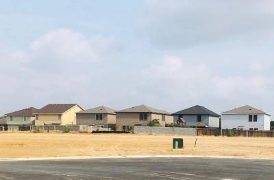 Laredo Single Family Home For Sale: 2603 Mario St.