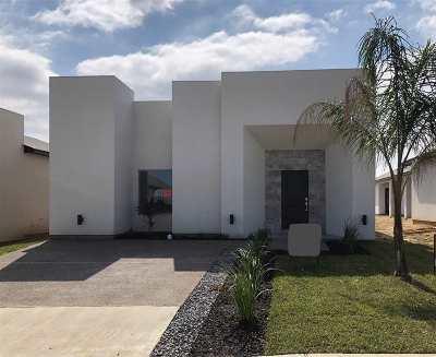 Laredo Single Family Home For Sale: 3805 Birge St.