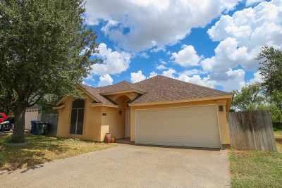 Laredo Single Family Home For Sale: 411 Cinnamon Teal Lp