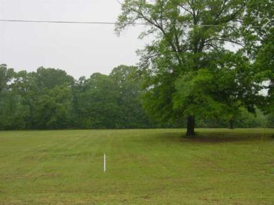 Diana Residential Lots & Land For Sale: Tbd Hwy 259