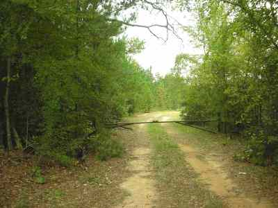 Hallsville Residential Lots & Land For Sale: Tbd Collins Rd