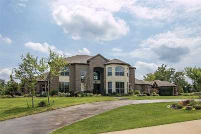 Single Family Home For Sale: 17 Stone Ridge