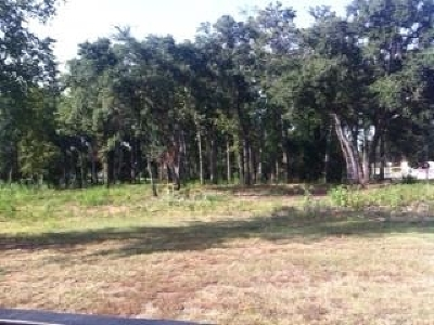 Residential Lots & Land For Sale: N Hwy 271
