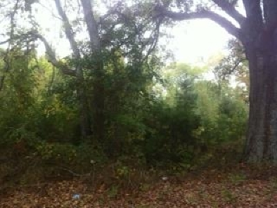 Residential Lots & Land Sold: County Road 253