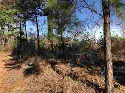Hallsville Residential Lots & Land For Sale: Tbd Dogwood Trail