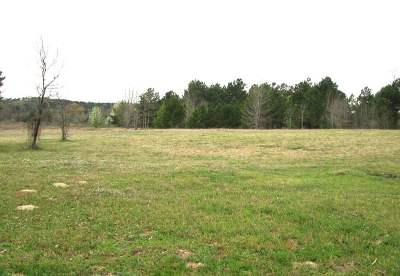 Hallsville Residential Lots & Land For Sale: Tbd Willow Rd