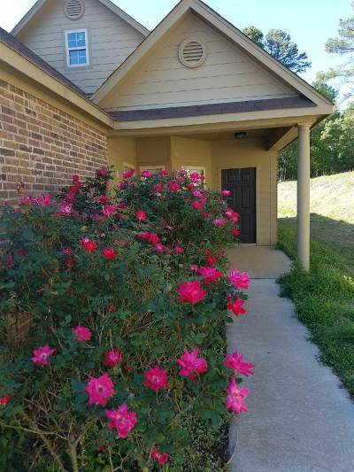 Longview Single Family Home For Sale: 1205 Silver Spur
