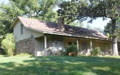 Single Family Home For Sale: 483 Sparks