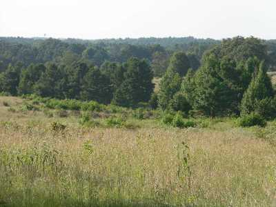 Gilmer Residential Lots & Land For Sale: Tbd Goldfinch Rd