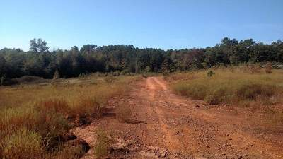 Hallsville Residential Lots & Land For Sale: 73 Acres Athens Church Road