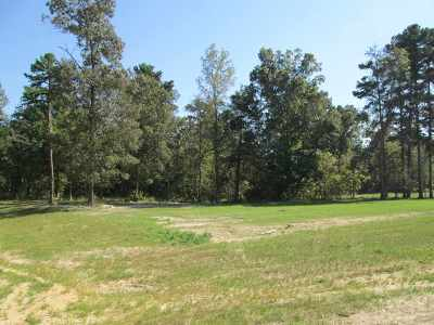 Gladewater Residential Lots & Land For Sale: Lot 31 Willow Creek Ranch Rd