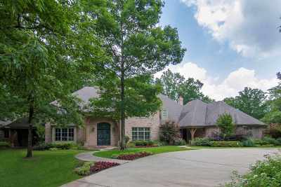 Single Family Home For Sale: 4020 Castle Ridge Dr.