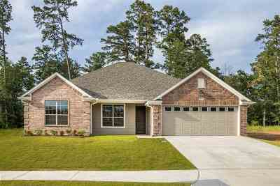 Single Family Home For Sale: 3351 Celebration Way