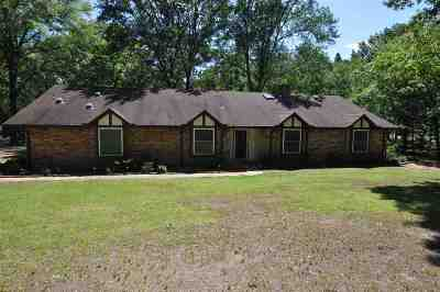 Single Family Home Active, Option Period: 473 James Drive