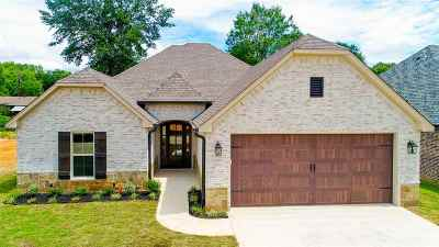Single Family Home For Sale: 825 Gemi Drive