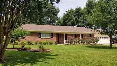 Single Family Home For Sale: 409 Delano Street