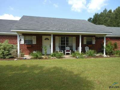 Gilmer Single Family Home For Sale: 3559 Us Highway 271