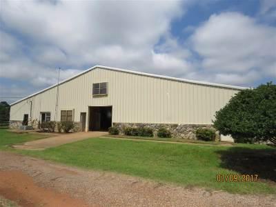 Kilgore Manufactured Home For Sale: 12185 Fm 2276