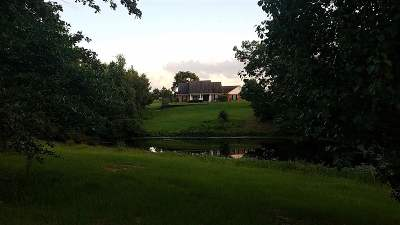 Diana Single Family Home For Sale: 544 Frances