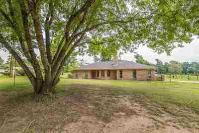 kilgore Single Family Home For Sale: 4161 E County Road 191