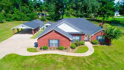Single Family Home For Sale: 388 Betty Jo Dr