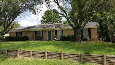 Longview, Hallsville, Harrison Single Family Home For Sale: 301 Dalee Drive