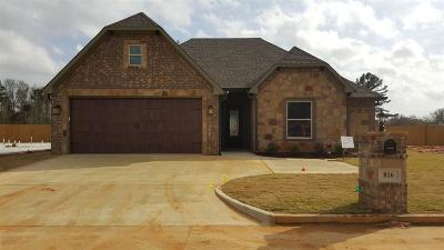 Single Family Home For Sale: 816 Gemi Dr