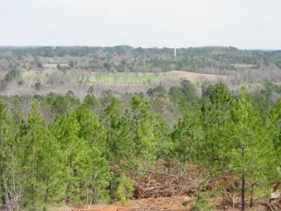 Gilmer Residential Lots & Land For Sale: Tbd 155n