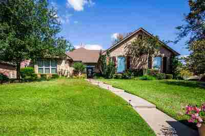 Single Family Home For Sale: 3100 Pinnacle