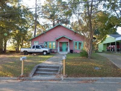 Gilmer Multi Family Home For Sale: 213 E Butler