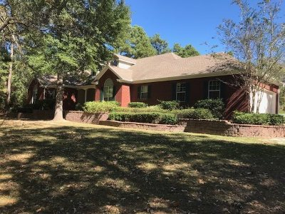 Gilmer Single Family Home For Sale: 8021 Us Highway 271