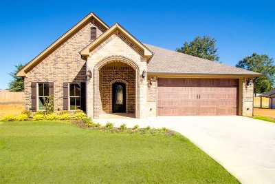Single Family Home For Sale: 821 Gemi Dr