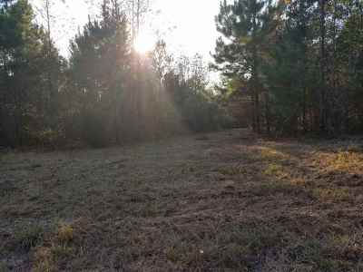 Ore City Residential Lots & Land For Sale: Tbd N Private Road 2234 Hwy 155