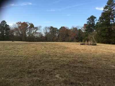 Hallsville Residential Lots & Land For Sale: 4314 Fm 450 N