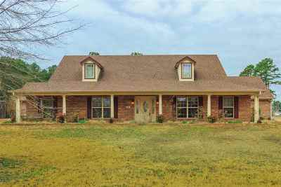 Kilgore Single Family Home For Sale: 454 Hilburn Rd.
