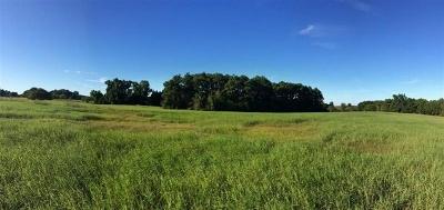 Hallsville Residential Lots & Land For Sale: Tbd Fm 450 N