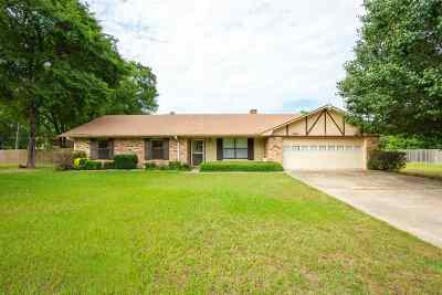 Gilmer Single Family Home For Sale: 2661 State Hwy 154 E