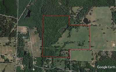 Gilmer Residential Lots & Land For Sale: 1490 Hackberry Rd