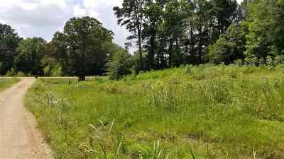 Gilmer Residential Lots & Land For Sale: Tbd Private Road 4351