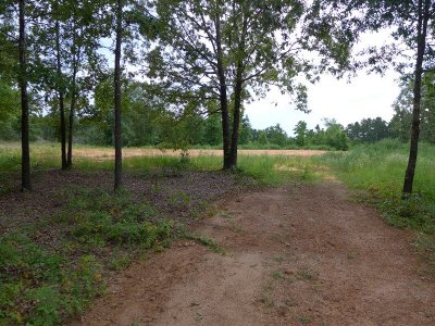 Gilmer Residential Lots & Land For Sale: 340 Palomino Place
