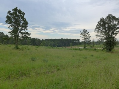Gilmer Residential Lots & Land For Sale: Tbd Palomino Place