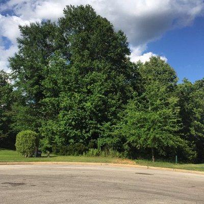 White Oak Residential Lots & Land For Sale: Tbd Travis Peak Trl