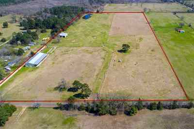 Hallsville Residential Lots & Land For Sale: 4603 Estesville Rd