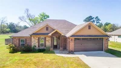 Hallsville Single Family Home For Sale: 211 Mt Pleasant Cutoff