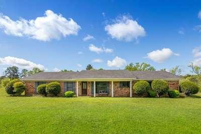Tatum Single Family Home For Sale: 20366 Fm 1716 E