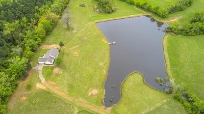 Hallsville Single Family Home For Sale: 4433 N Fm 450