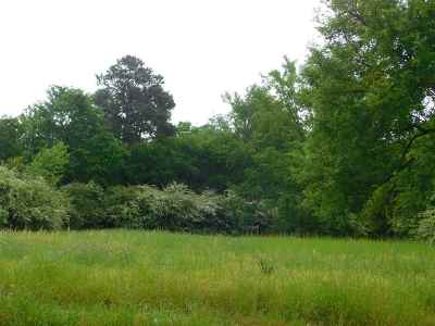 Longview Residential Lots & Land For Sale: 1328 Alpine Rd.