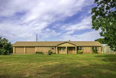 Tatum Single Family Home For Sale: 20504 Fm 1716 E